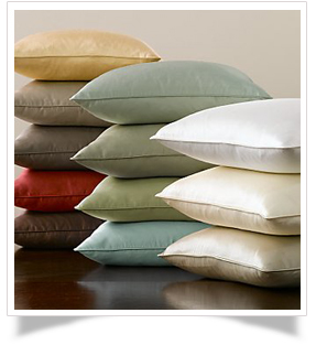 "13TW - 13"" Throw Pillows with a welt"