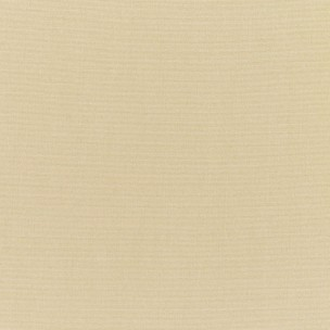 Antique Beige - Antique Beige a Sunbrella fabric