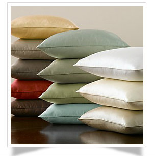"15tw - 15"" Throw Pillows with a welt"